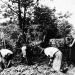 Хрвати приморавају српске сељаке да ископају сопствене гробнице