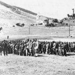 Dinara Chetnik Division 1942