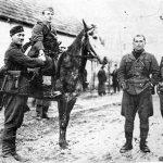 Партизани и усташе у Западној Босни 1942-1943.