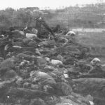 Стрељање у Краљеву 1941. Немачки војник из пиштоља убија Србе који су преживели плотун