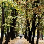 Велики парк, јесен
