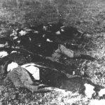 Група стрељаних у Шумарицама