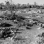 Препознавање жртава из јаме Трели, 4. новембра 1943.