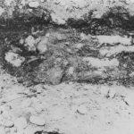 Два леша четника, које су комунисти убили када су им пали у руке. Закопали су их тако да су их животиње и звери могли оглодати. По животињама су откривени, па затим од четника поново сахрањени