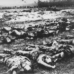 """Посмртни остаци 196 Срба убијених 28/29. априла 1941. године у Гудовцу код Бјеловара. Био је то први масовни злочин Хрвата над Србима у """"НДХ""""."""