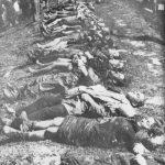 Жртве извучене из Саве, које су Хрвати убили непосредно по напуштању Јасеновца