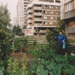 Главица, Српско Сарајево, 25. септембра 1995. Овакве баште иза солитера спашавале су од глади СНИМИО: Горан Вељковић