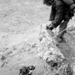 Есесовци из дивизије ''Принц Еуген'' у Операцији Копаоник
