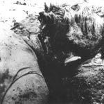 На врату жртве видљива је рана од ударца секире као и убодна рана од ножа на леђима
