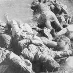 Тела јасеновачких жртава наслагана на обали Саве