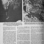 Чланак из ''Погледа'' од 12. октобра 1990, страна 2