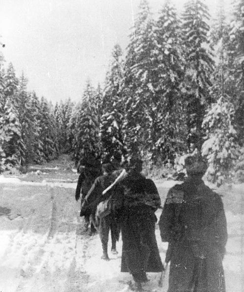 Зима 1944/45: Дражини четници у Босни