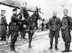 Руковање партизана и усташа у Босни 1942. г.